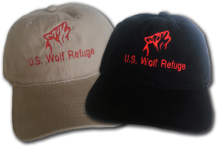 Gift Shop's new hat designs
